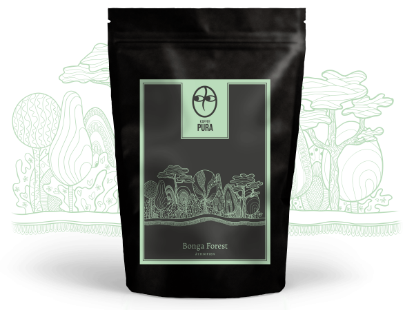 Bonga Forest Wildkaffee, BIO & fair gehandelt
